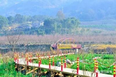 春节期间宁德接待游客近260万人次 收入逾16亿元!