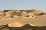气候持续变暖 撒哈拉沙漠面积百年间扩大逾10%
