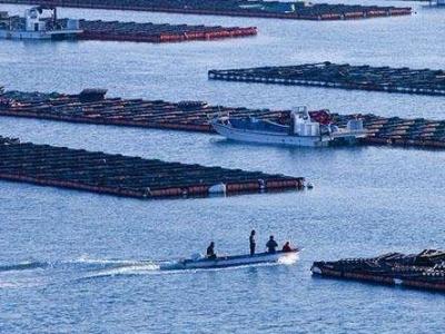 福建渔业叩响三千亿大门