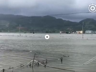 霞浦牙城镇:虾塘缺口海水倒灌 干群合力抢险救灾