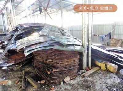 加工厂处置危险废物 生产废液直排户外 寿宁公安局以污染环境罪刑事立案并抓获数人