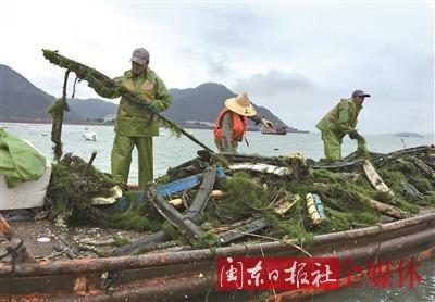 蕉城区继续在三都澳礁头、黄湾、三都岛港口等3个海域大规模开展海上养殖综合整治行动