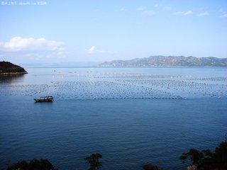 金融机构主动服务海洋经济 积极推动海上养殖综合整治