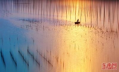 福建霞浦举办全国摄影大展 展现绝美滩涂风光