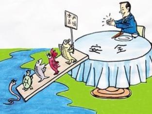 福鼎海鸥:质量+科技树立出口水产企业标杆