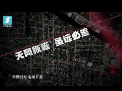 《红色通缉》第一集《引领》速览版