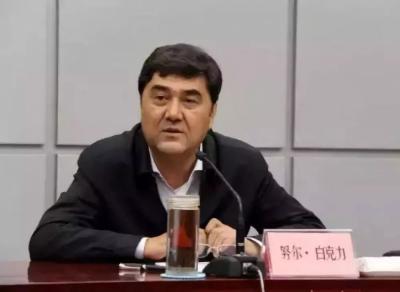 国家能源局原党组书记努尔·白克力被双开