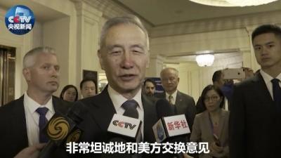 刘鹤接受央视等媒体采访