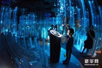 数博会举行数字艺术特展