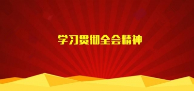 市委政法委学习贯彻市委四届九次全会精神