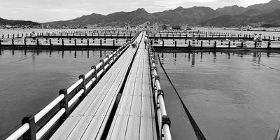 """中国海洋报:从""""海上浮城""""到""""海上田园""""——福建省宁德市海上养殖综合整治取得显著成效"""