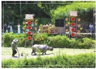 屏南厦地古村农耕文化节:田园盛事唤醒乡土记忆