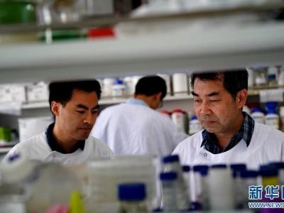 我国研发诺如病毒四价疫苗获批进入临床研究