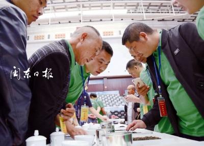 高山出好茶 集结展风采 中国名茶之乡寿宁茶文化节举行