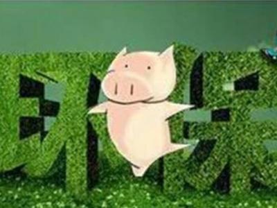 生猪规模养殖场达不到环保要求一律关闭整改