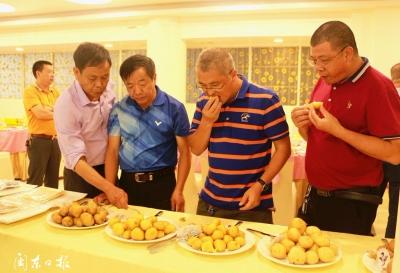 周宁县举办山海协作(周宁·厦门)食材品鉴会