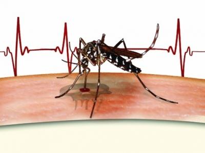 菲律宾登革热疫情暴发致超过450人死亡