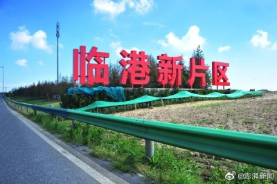 临港新区与深圳示范区同时发力,中国深层次开放新格局一路向前
