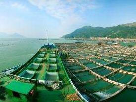 坚定不移推进全面从严治党 助推海洋与渔业事业发展