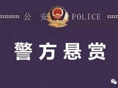 福建寿宁通缉9名在逃人员 8人刑拘在逃1人逮捕在逃