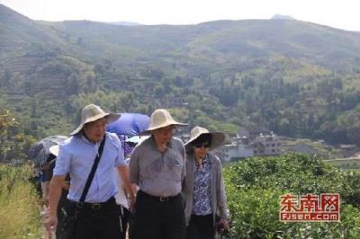 """专家学者齐聚福鼎 """"把脉""""""""寻方""""栀子产业发展"""