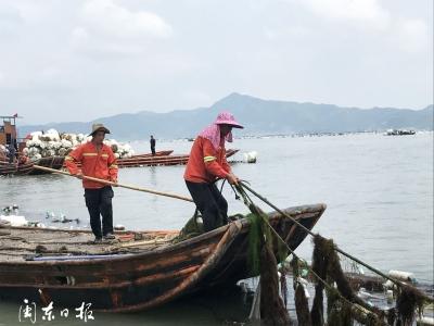 霞浦县开展官井洋大黄鱼海洋生态保护禁养区清理整治统一行动