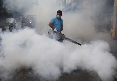 登革热已致菲律宾逾千人死亡
