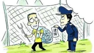霞浦县检察院从严从快批准逮捕一起非法狩猎案