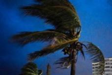 """最高时速320公里 飓风""""多里安""""致巴哈马至少50人死亡"""