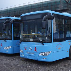 市公交公司:坚持群众需求导向 建设人民满意公交