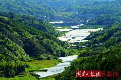 周宁:绿色发展  做厚生态家底