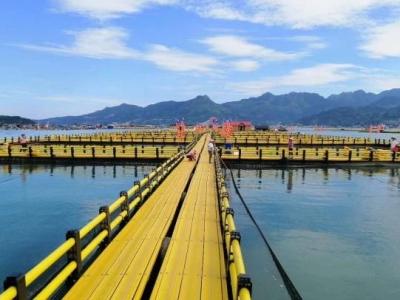 我市启动海上养殖综合整治PPP项目