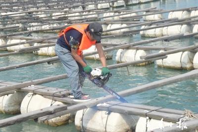 蕉城:重拳整治在行动 建立海上新秩序