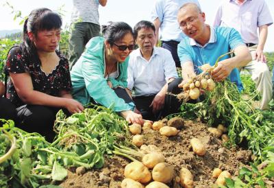 周宁:院地合作让农民赚钱有门路