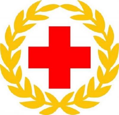 市级红十字大病救助开始申请