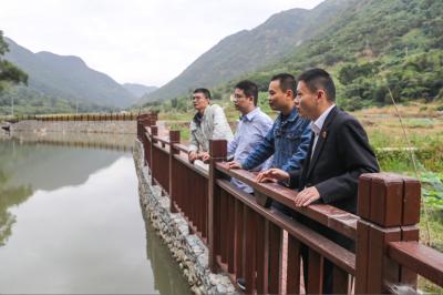 霞浦法院:发挥法治力量 助力乡村振兴