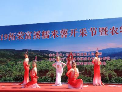 柘荣县富溪镇举办第一届糯米薯开采节暨农特产品展销会