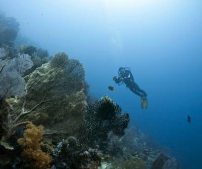 印尼潜水失踪中国公民仍无下落 搜救范围扩至100平方公里
