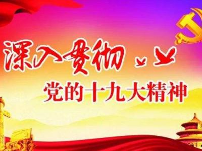 周宁:深入学习贯彻党的十九届四中全会精神