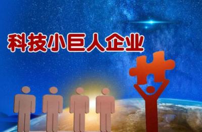 """15家""""科技小巨人""""企业   获专项奖补742.7万元"""