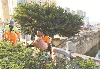 东侨环卫处助力黑臭水体整治行动 清理岸边垃圾