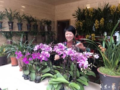 宁德市迎新花卉及伴手礼推广月活动启动