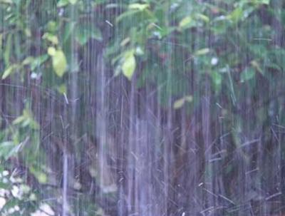增雨2315.1万立方米 福建农业旱情基本解除