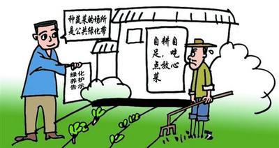 福安:严禁随意占用,发现违规种植可举报