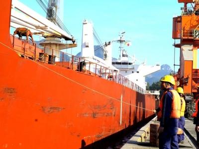 2019年漳湾作业区散杂货吞吐量将接近1100万吨