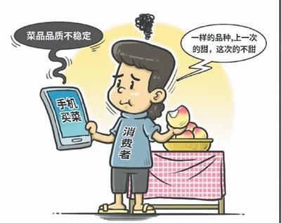 """手机买菜""""圈粉"""",该如何守护好""""指尖""""上的菜篮子?"""