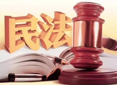 全国人大常委会组成人员热议民法典草案