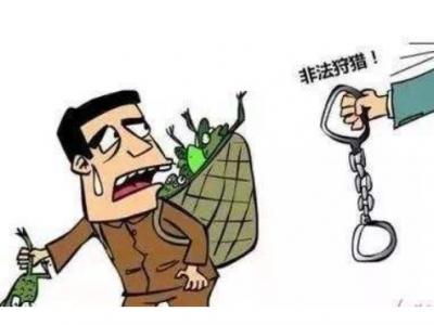 福鼎成功破获一起非法狩猎案