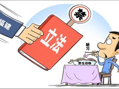 寿宁:公检法联合发布全面禁食禁售野生动物通告