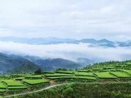 祝贺!寿宁县上榜获批成为国家生态综合补偿试点县